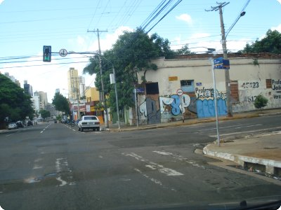 figueira_11