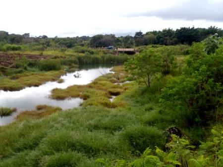 Vista do alto da barragem de pedras. A lagoa estreita que substituiu o antigo fio d'água do córrego e, ao fundo, a ponte do Anel Rodoviário.