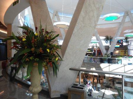 ShoppingBosqueDosIpes-06