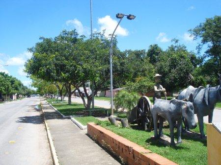 Avenida Laranjeiras.